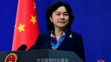 WHO team reach China for reserch of new coronavirus source.