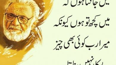 95th birth anniversary of eminent writer, playwright and broadcaster Ashfaq Ahmed observed